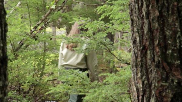 mushroom-hunter-forest