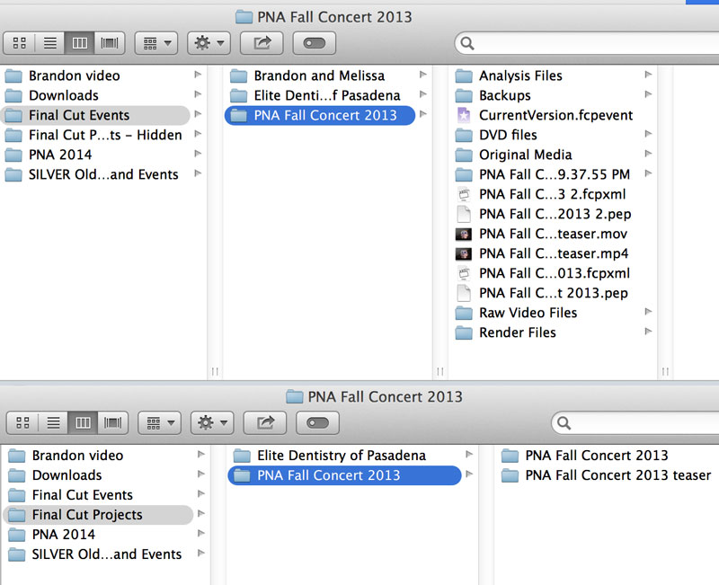 fcpx-organization-example