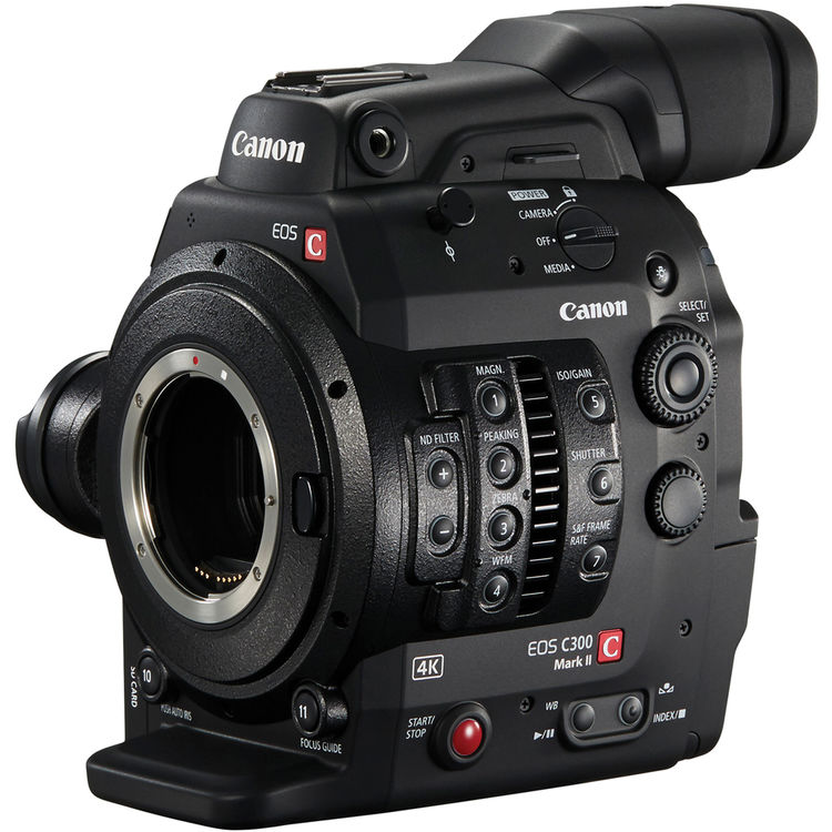 best camera under 500 canon
